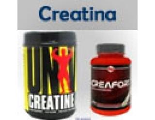 Creatinas (15)