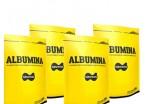 Combo - 2 Kg de Albumina - NaturOvos