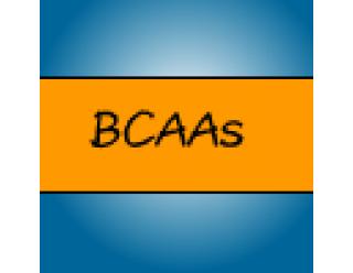 BCAAs (36)