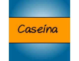 Caseína (6)