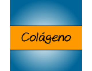 Colágeno (29)